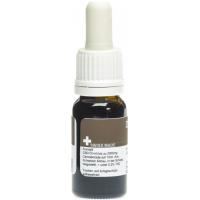 Drogovita Öl Tropfen 20% (10ml)