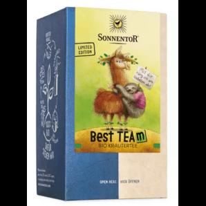 Sonnentor Best TEAm Organic Tea (18x1.8g)