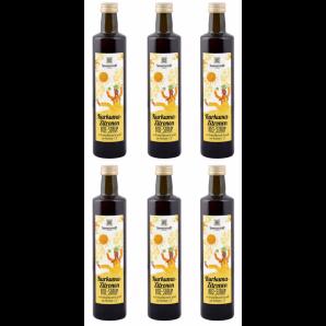 Sonnentor Turmeric Lemon Syrup Organic (6x500ml)