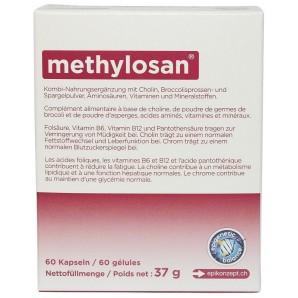 Methylosan (60 Kapseln)