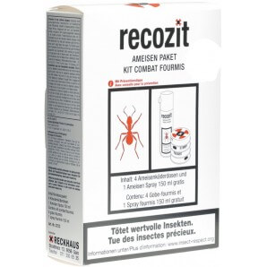 Recozit Ants Package (1 pc)