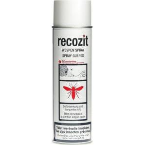 Recozit Wasp Spray (500ml)