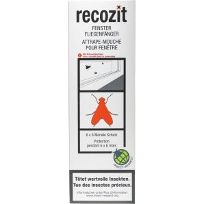 Recozit Window Flycatcher (6 pieces)