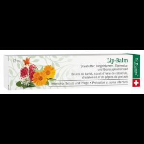 Dr. Dünner Lip Balm Schutz und Pflege (12ml)