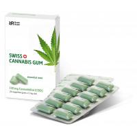 Swiss Cannabis Gum 120mg Mint Box (24 Stk)