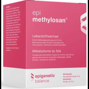 epi methylosan Kapseln (60 Stk)