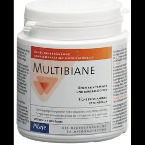 Multibiane Kapseln (90 Stück)