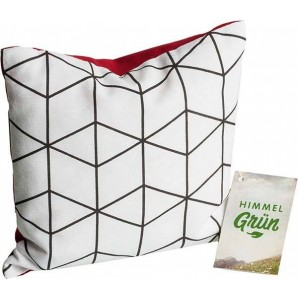 Aromalife Arven Pillow 20x20cm Modern (1 pcs)
