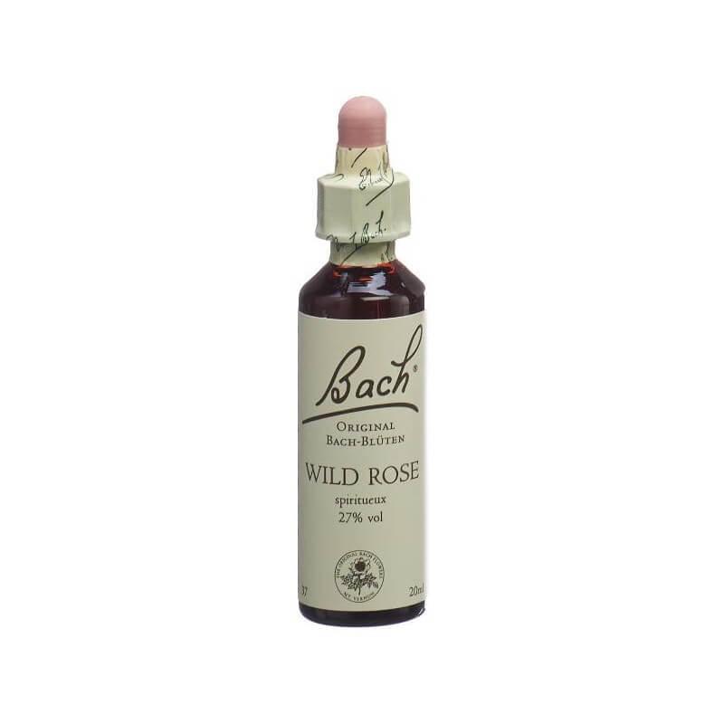 Bach-Blüten Original Wild Rose No 37 (20 ml)