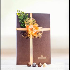 Fibel Pralinés & Truffes - Aeschbach Chocolatier (40er)