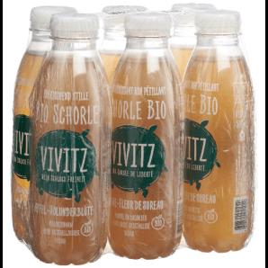 VIVITZ - Organic Iced Tea Spritzer Apple Elderflower (6x5dl)