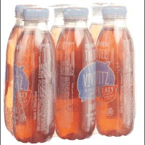 VIVITZ - Organic Iced Tea Easy Fruits (6x5dl)