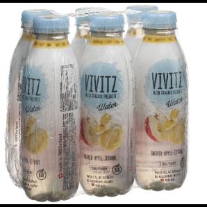 VIVITZ - Eau Gingembre-Pomme-Citron (6x5dl)