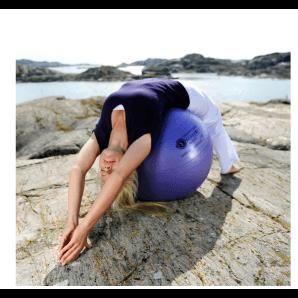 Ballon de gymnastique Sissel Securemax 65 cm (bleu, violet)