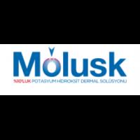 Molusk